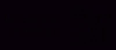 logo Konstanzgreytranspalight